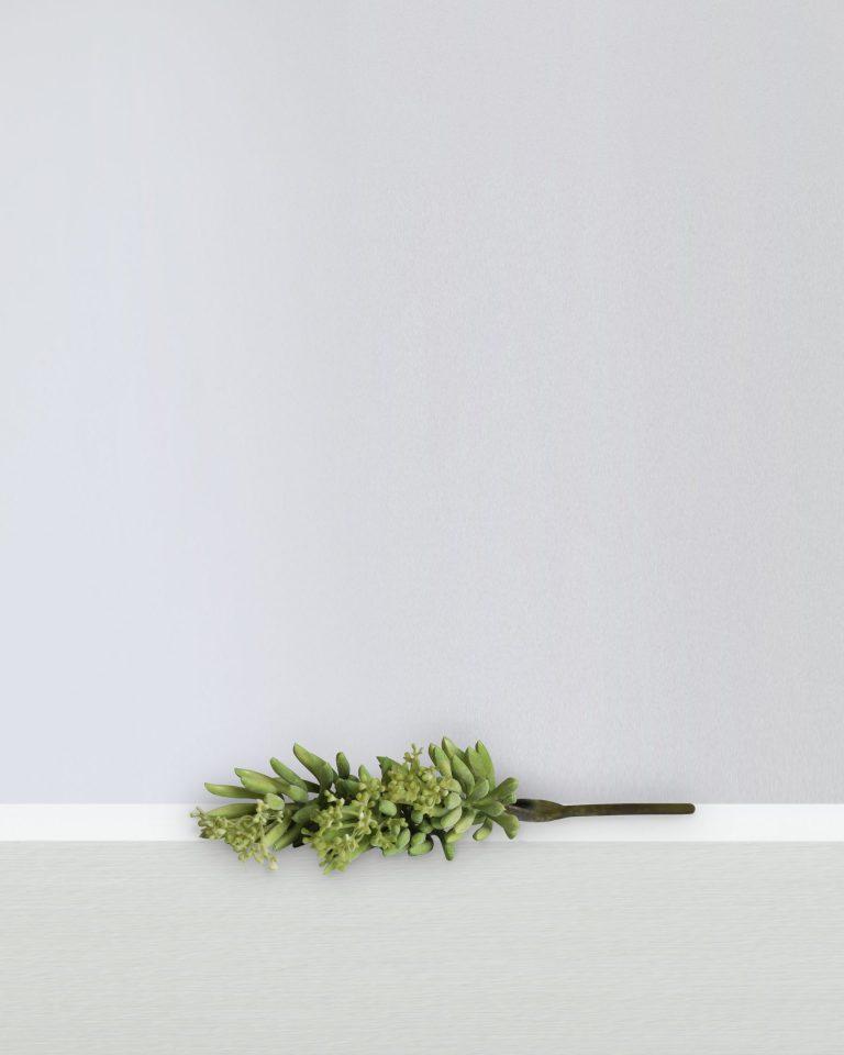 ALOE FLOWER SPRAY GREEN