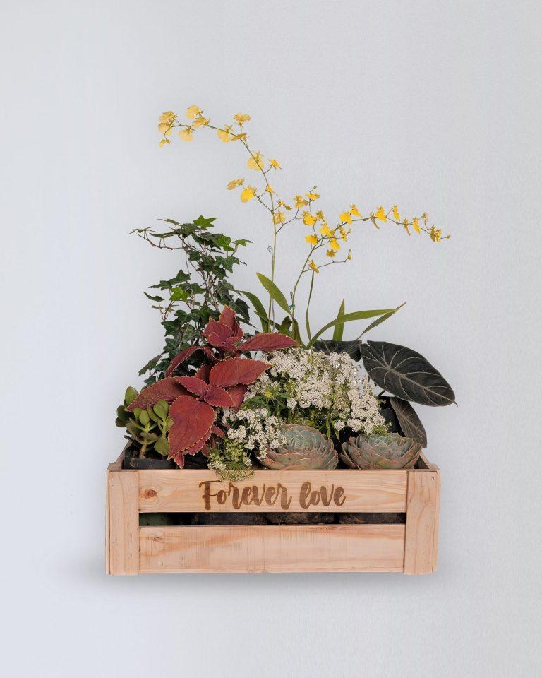foreverlove_gardenbox
